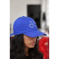 Dove of Peace dad hat  blue  cap baseball  Zeta Phi Beta  eb-73352259